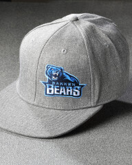 Bears cap grå